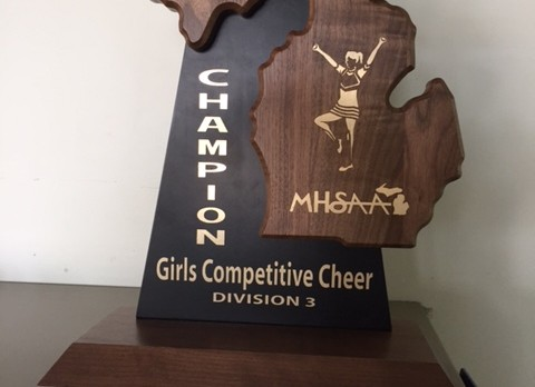 Freeland Cheer Captures First Ever District Championship