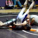 Wrestling Team Districts