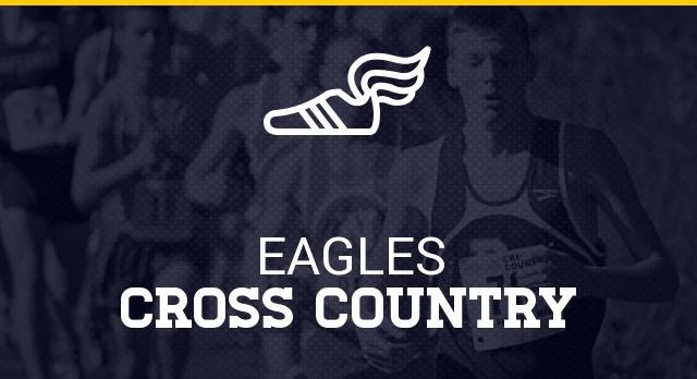 Who are the fastest cross country runners in Livingston County?