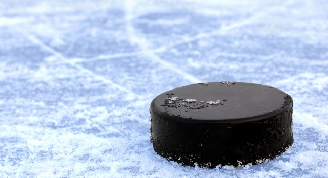 A look at Livingston County's 2017-18 high school hockey teams