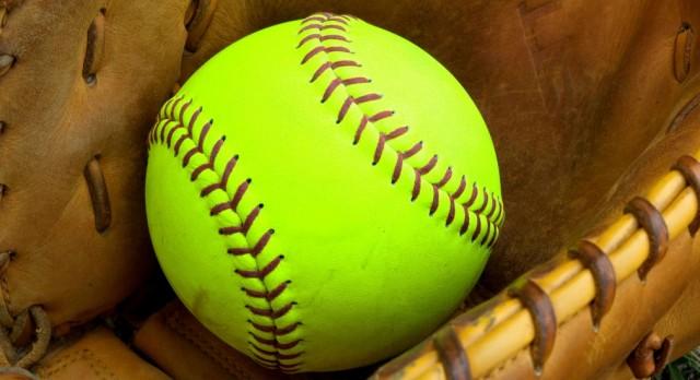 Meet the 2017 All-Livingston County softball team