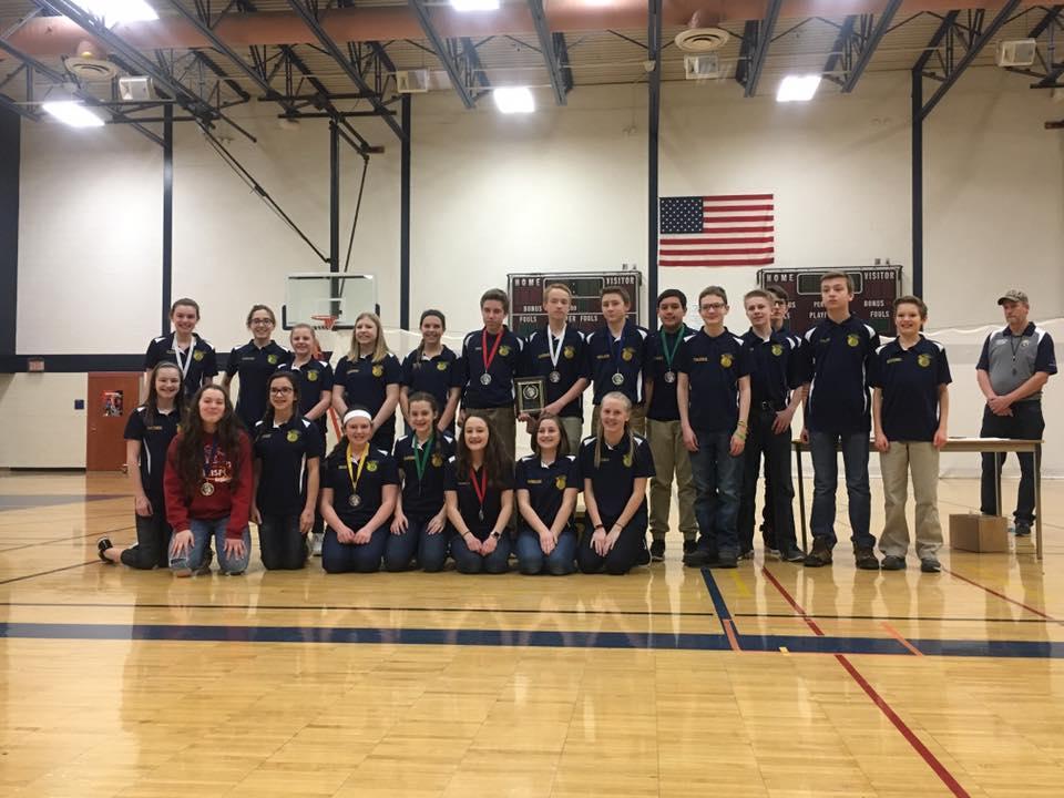 MS Team Champions