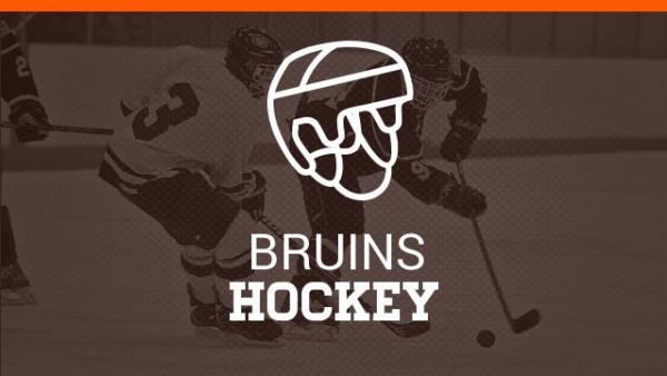 Boys-Hockey.jpg