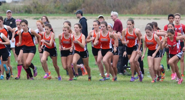 Bruin cross country teams start season on the right foot.