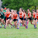 2017 Avon Lake Cross Country Meet