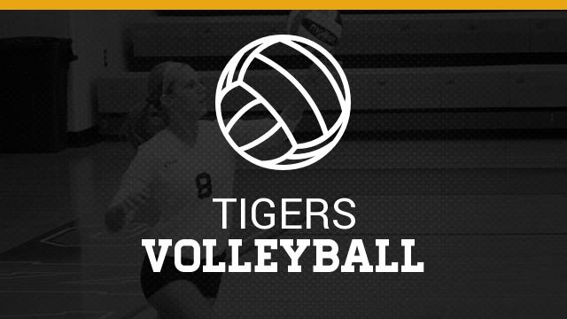 Three Tigers Make MHSVCA All-Regional Team