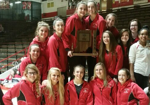 Gymnasts win sectional title