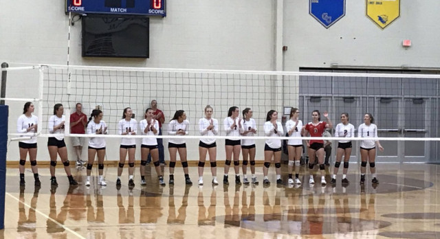 Volleyball advances to sectional final