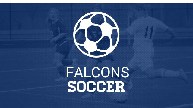 Lady Falcon Soccer Camp