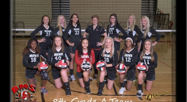 Brown Volleyball Pictures !