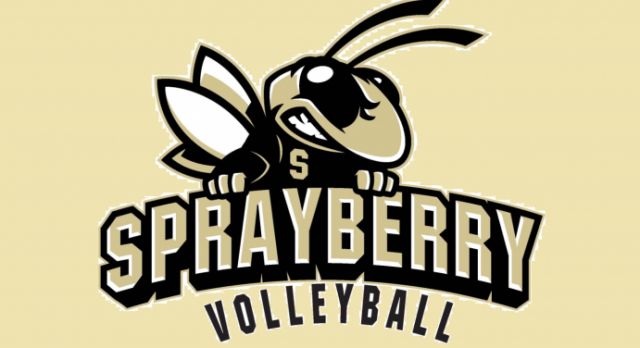 Volleyball Tryouts May 15 – 18