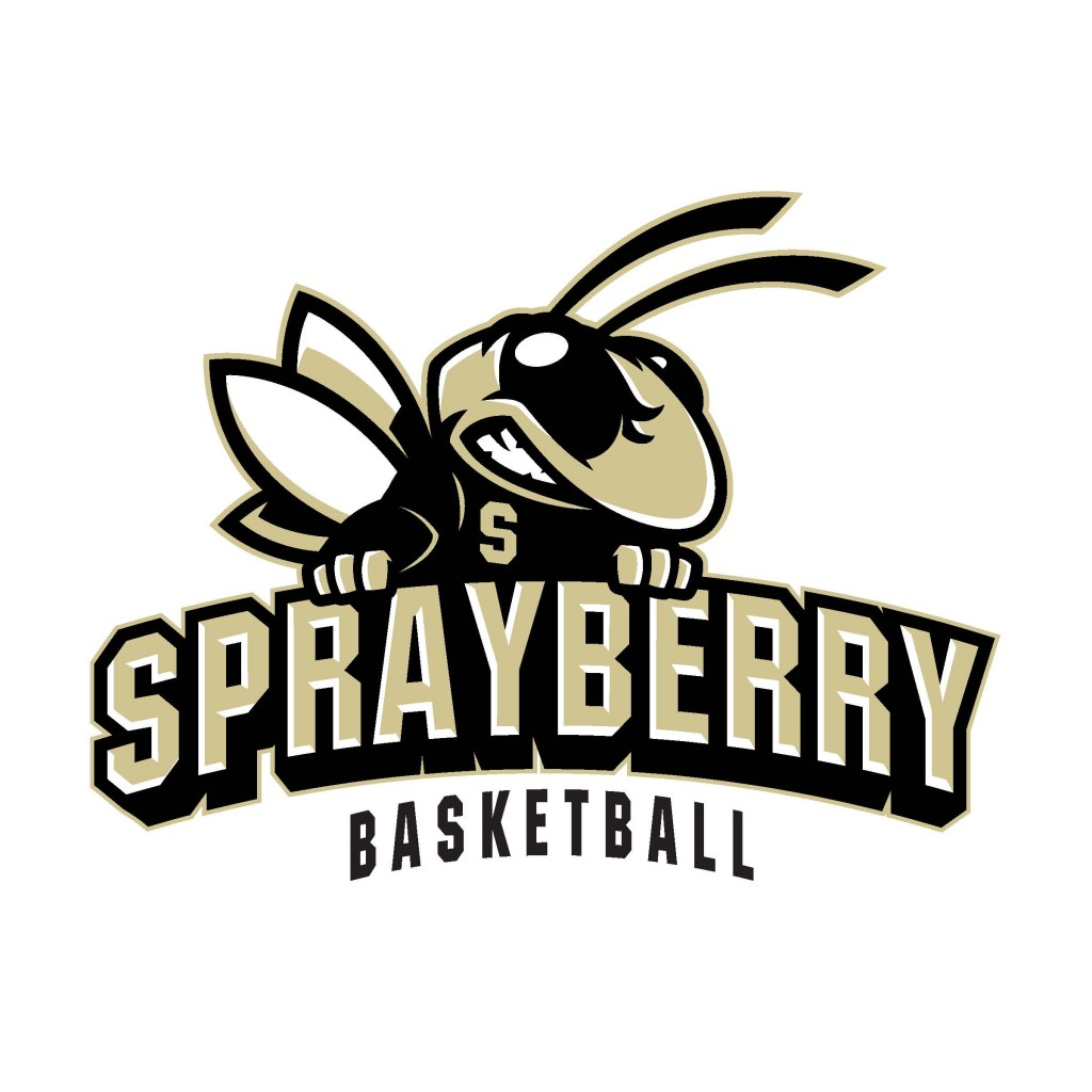 sprayberry team home sprayberry yellow jackets sports