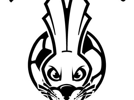 LRS Soccer Logo