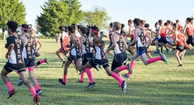 Boys XC at Rockwall Sting