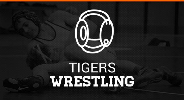 WIT Wrestling Tournament Results  sc 1 st  Massillon Tigers Athletics : ohsaa sectional wrestling - Sectionals, Sofas & Couches