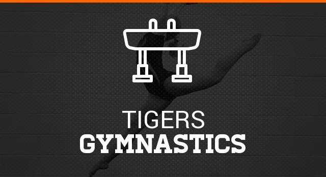 Gymnastics Meet vs. Cloverleaf 2/8/16