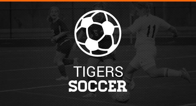 Tigers win at home against Ellet