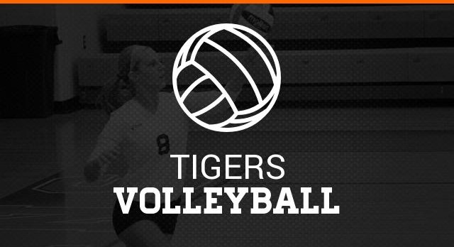 Tigers Volleyball Camp