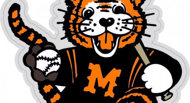 2017 Massillon Tiger Baseball Camp