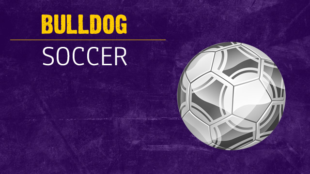 Soccer Sectional Info