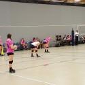 Volleyball vs Brownsburg