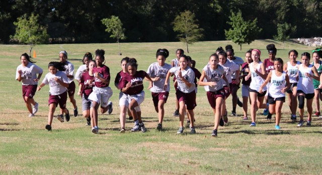 Lamar cross country excels in the Temple City Meet