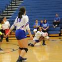 Tem-Cat Volleyball vs. Bryan