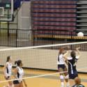 Volleyball 9/18/14