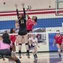 Homewood Volleyball Vs Shades Valley
