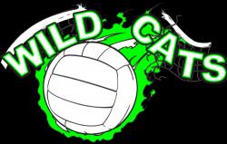 High School Volleyball Tryout Information (Varsity, JV & Fr.)