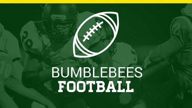Bees Make All State Football Team