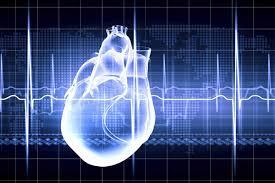 Cardiac Testing Coming to Herron!