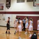 FALCON VARSITY GIRLS BASKETBALL vs Stevenson & Port Huron