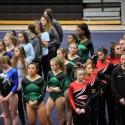 Centerville Invite Gymnastics Gallery