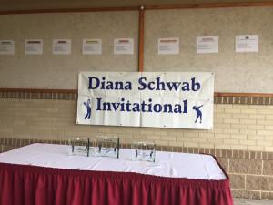 Remembering Diana Schwab