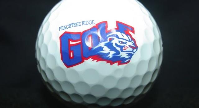 Ridge Golfers Earn All-Region Awards