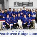 Peachtree Ridge Ice Hockey Team Photo