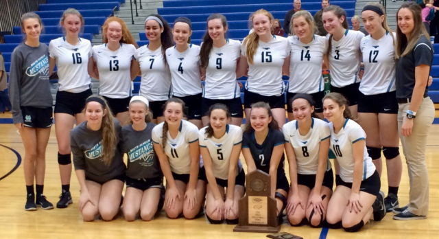 Volleyball reaches Final Four of State
