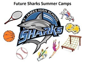 sharks logo Summer Camps
