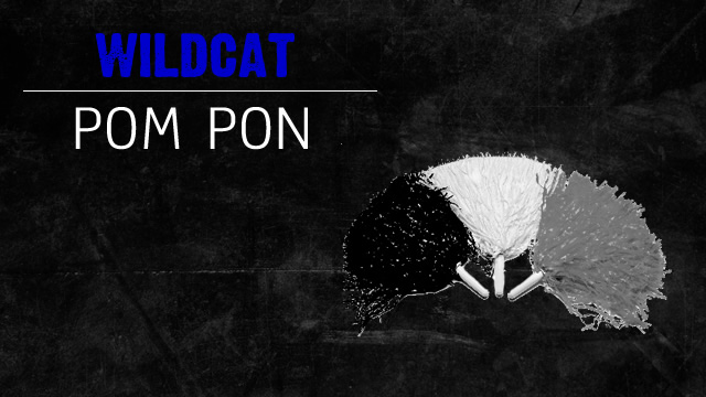 FMHS Poms Try Outs April 20-24