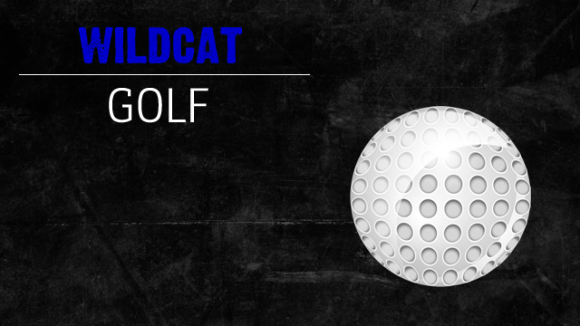 3 Wildcats qualify for state golf