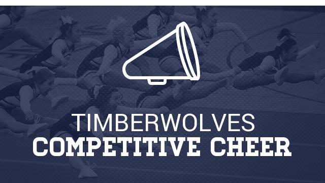 Basketball Cheerleading Tryouts