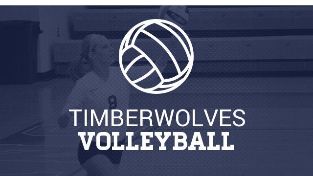 Volleyball Summer Information