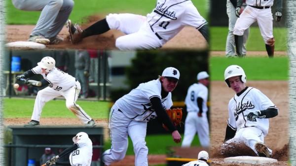 Baseball Poster Final