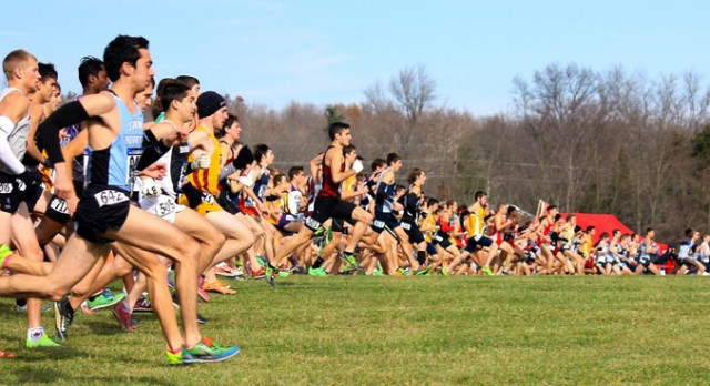 AMS Cross Country to begin practice on Monday, August 21st