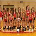 2014 JV Volleyball Team