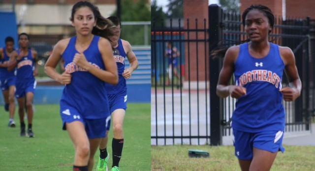 State Cross Country Meet is Nov. 5th