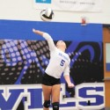 Fall 2014 Volleyball