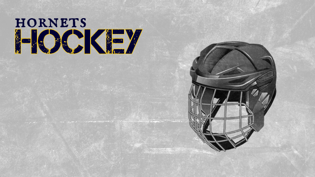 Saline Hockey Information Guide