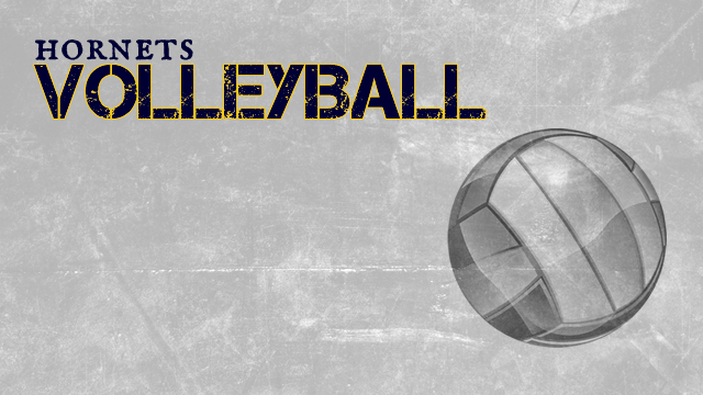 Summer Volleyball Opportunities